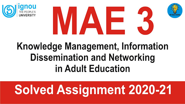mae 3 solved assignment; mae assignment