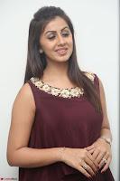 Nikki Galrani in a Brown Shining Sleeveless Gown at Nakshatram music launch ~  Exclusive 089.JPG