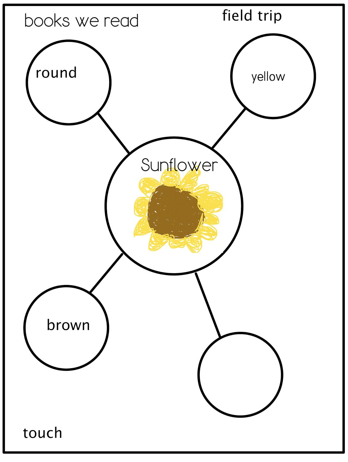 Joyful Learning In Kc Sunflowers And Summer