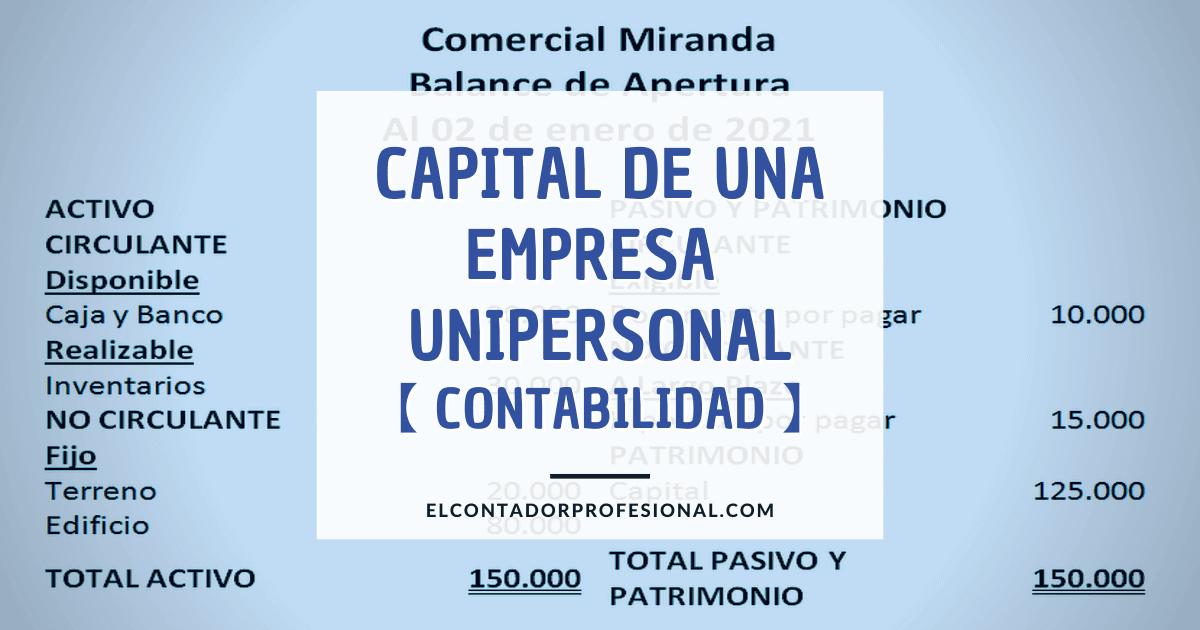 capital de una empresa unipersonal contabilidad