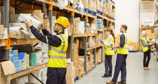 logistica - primeiro emprego