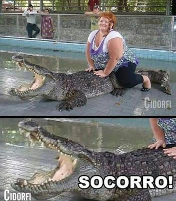 memes, humor, engraçado, piadas, site de humor, site de memes, memes brasileiros, brasileiros engraçados, memes br, memes brasil, comedia