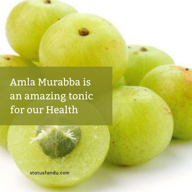 Amla Murabba is an amazing tonic for our Health