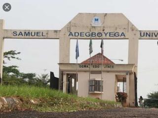 COURSES OFFERED IN SAMUEL ADEGBOYEGA UNIVERSITY, www.sau.edu.ng