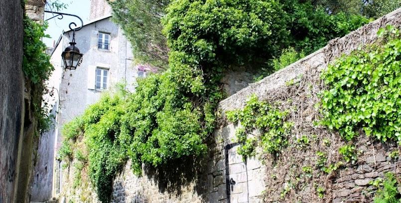 Mój tajemniczy ogród / Mon jardin secret