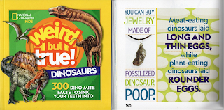 Dinosaur Poop Jewellery