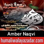 http://www.humaliwalayazadar.com/2015/06/amber-naqvi-nohay-2016.html