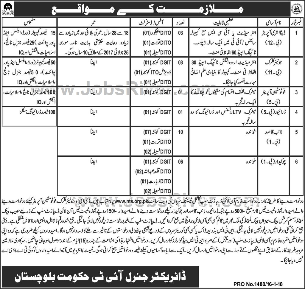Jobs In Director General IT Government of Balochistan 2018
