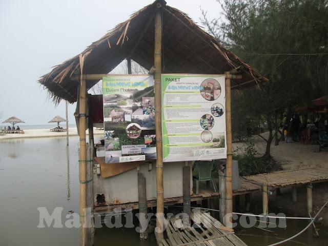 Pantai Mangrove, wisata sumatera utara, wisata pantai