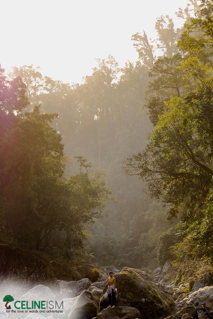 pudtol forest reserve