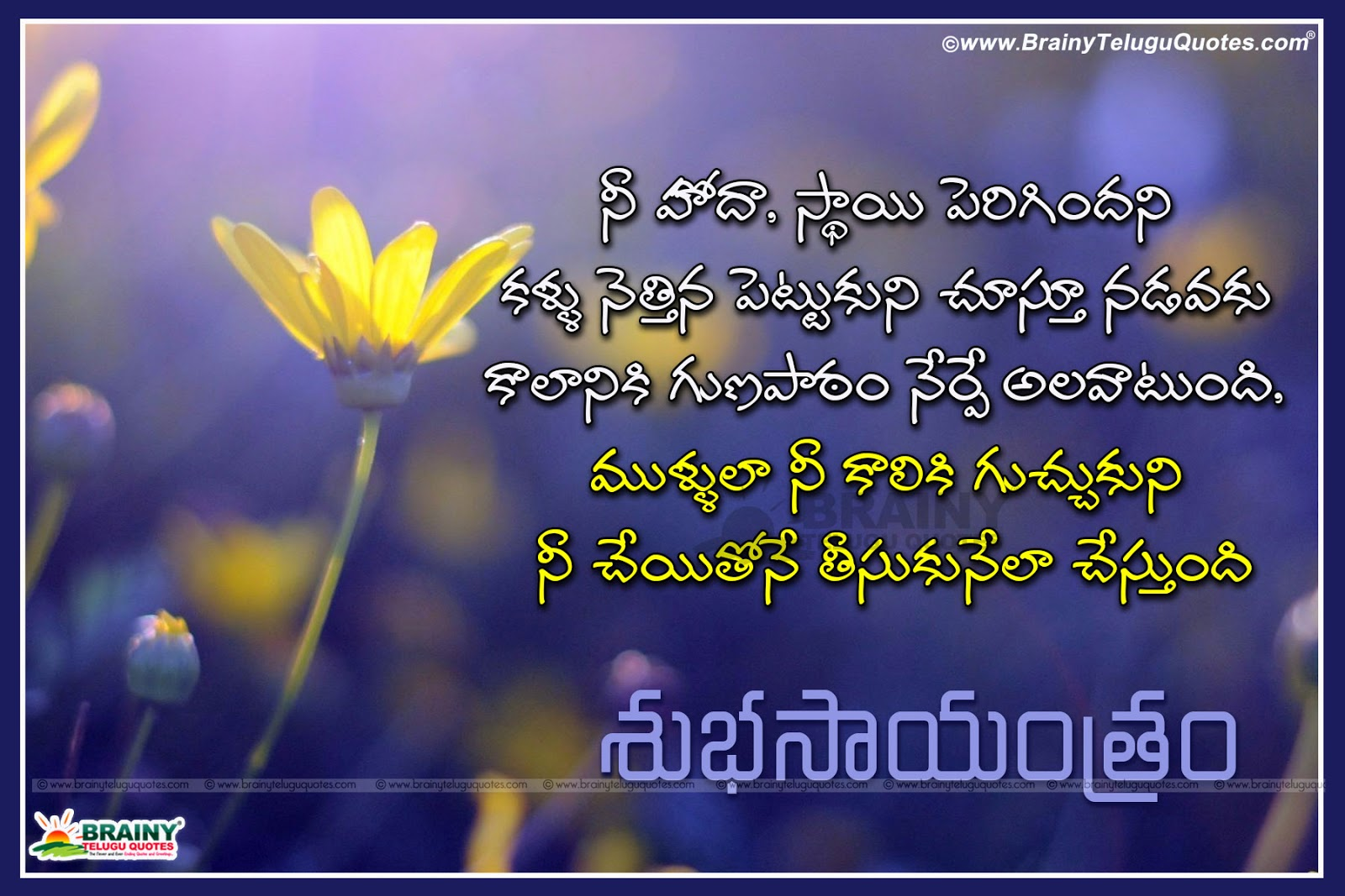 Telugu Inspirational Good Evening Quotes With Flowers Hd Wallpapers