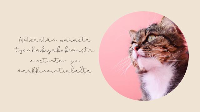 www.lohiluoma.fi