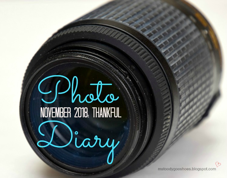 PHOTO DIARY NOVEMBER 2018 | Ms. Toody Goo Shoes
