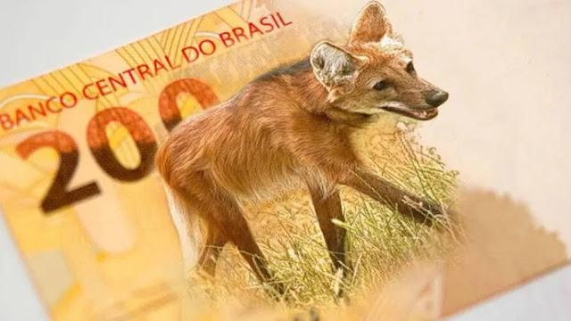 Nova cédula de R$ 200 já começa a circular nesta quarta (2).