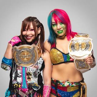 WWE Tag Team Womens TLC Flair Lynch Championship