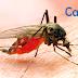 如何有效防蚊?讓醫師告訴您