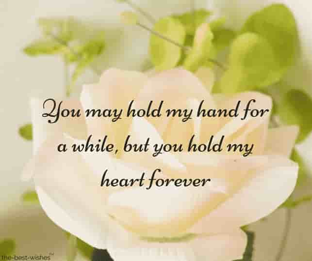 white rose images with quotes