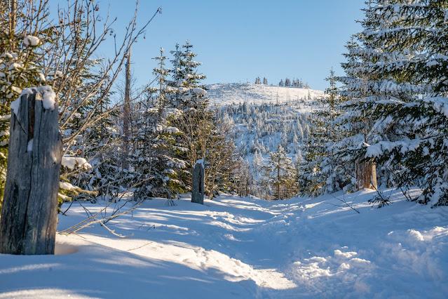 Wanderung auf den Lusen  Winterwandern im Nationalpark Bayerischer Wald 09