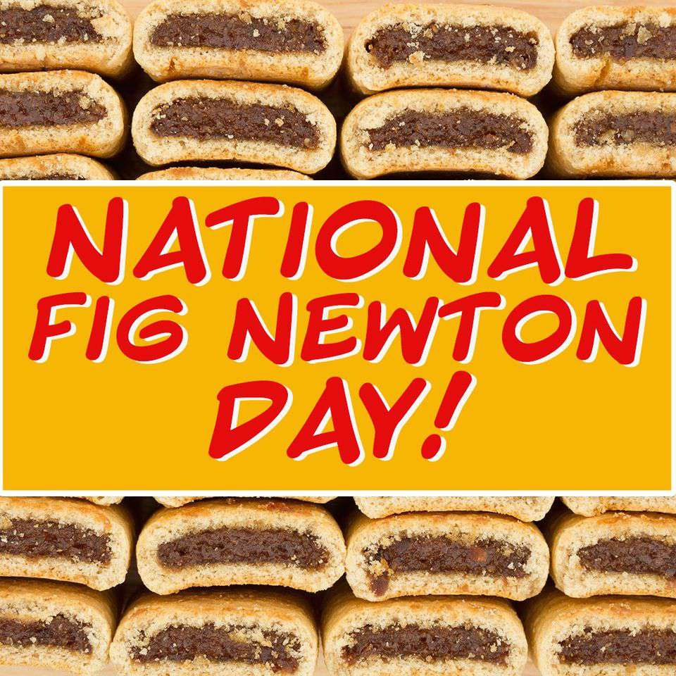 National Fig Newton Day Wishes