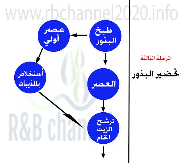 مراحل عملية استخراج الزيت