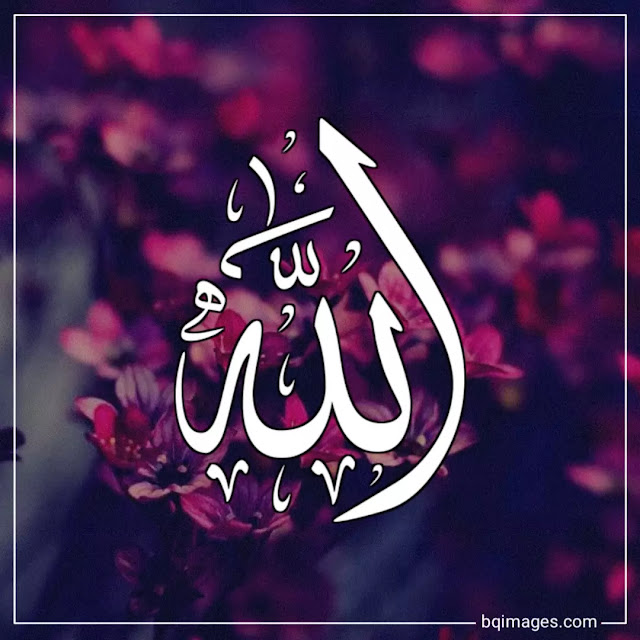 allah images for whatsapp dp