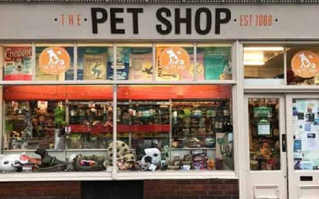 Cara Memulai Bisnis Pet Shop Cukup Menjanjikan