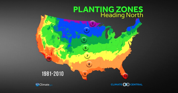USDA Hardiness Zone