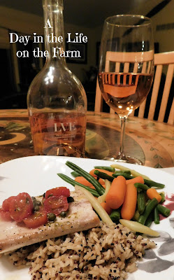 dinner plate with wine