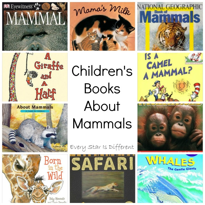 Children's Books About Mammals