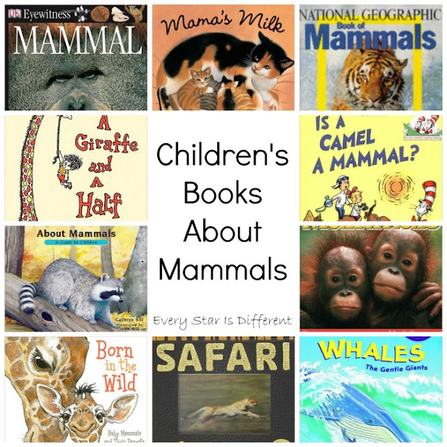 Children's Books About Mammals
