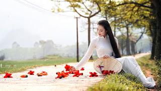 Giai Điệu Quê hương - Trần Đức Phổ - Page 4 867447031447224320