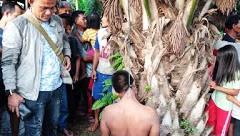 Tergantung di Pohon Kelapa Sawit Warga Bingung dengan Kematian Royanto