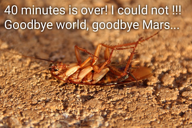 Cockroach in Mars. Will the cockroach survive on Mars?