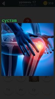 Схематически на рисунке показан сустав в колене, коленная чашечка