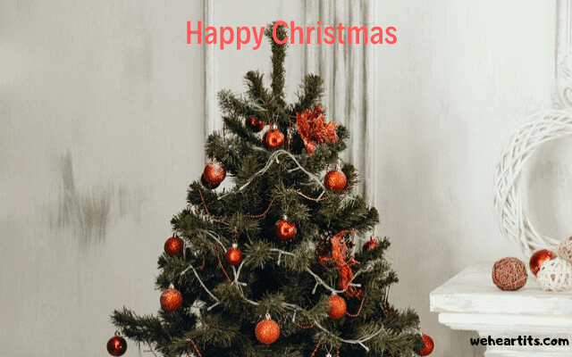 happy christmas images dp
