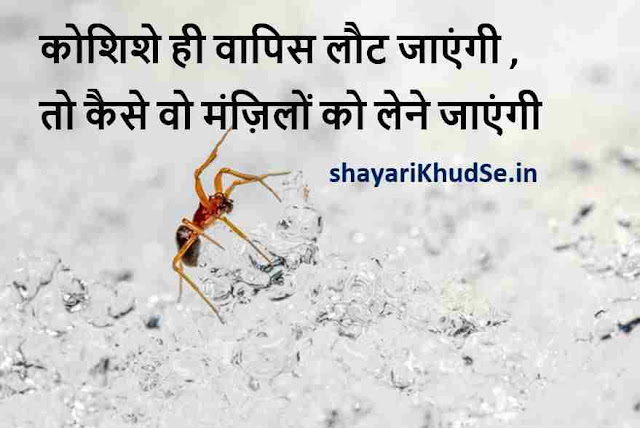 my life quotes hd pics, my life through pictures quotes