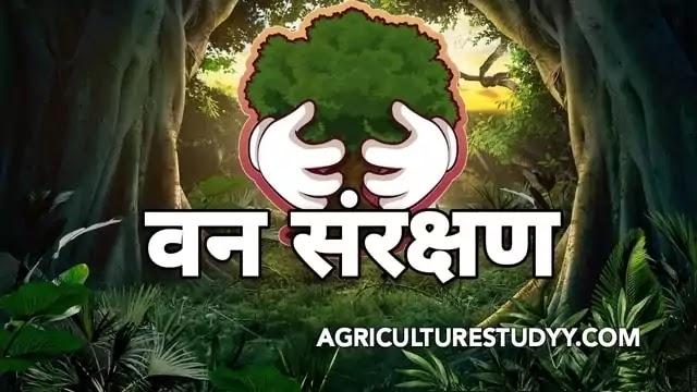 भारत में वन संसाधन संरक्षण के उपाय एवं वनों का विकास, वन संसाधन संरक्षण की क्या आवश्कता है, वन संसाधन संरक्षण के उपाय, भारत में वनों का विकास,