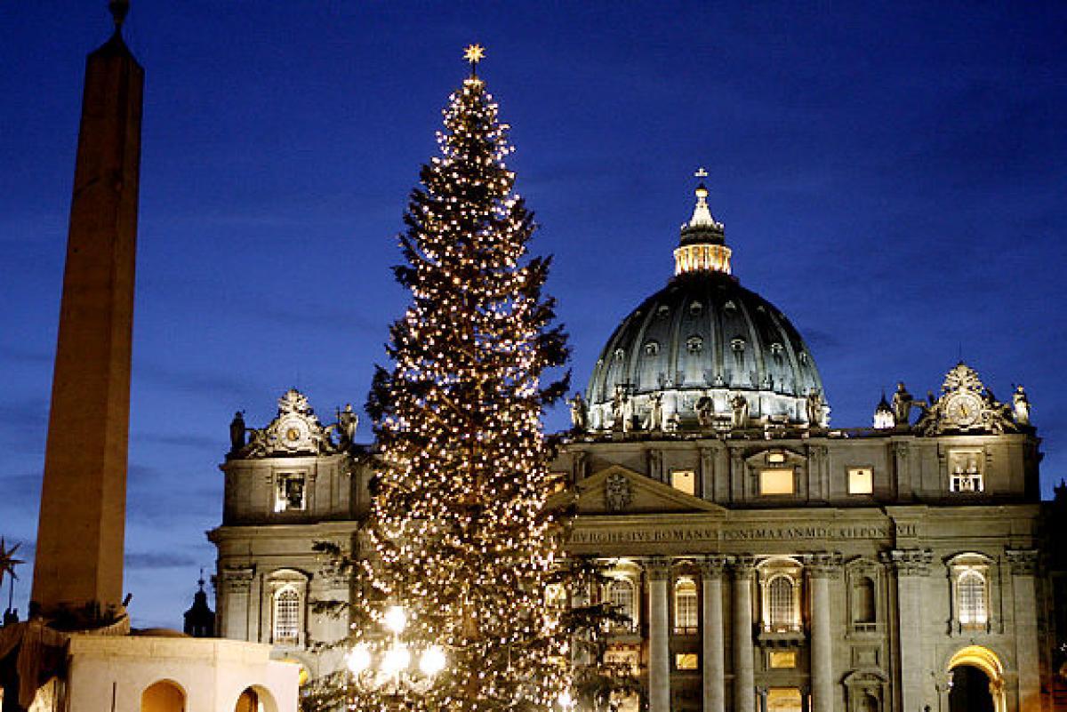 Vatican Christmas Tree 2020 Il Sismografo: SloveniaVatican Christmas tree to come from