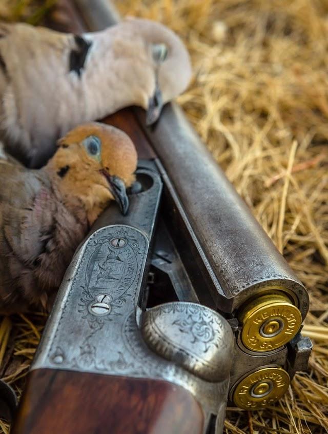 Ωρίων: Η Νέα Δημοκρατία του Κυριάκου Μητσοτάκη δολοφονεί το κυνήγι