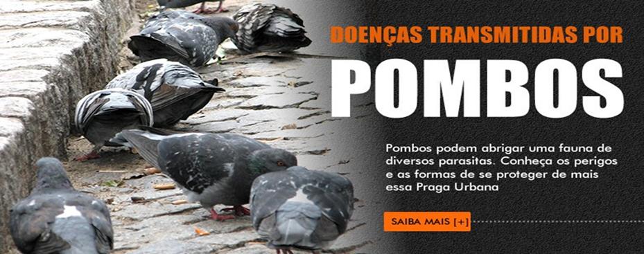 Limpeza de Caixa de Agua para Mercantil Paulista 250 Ltda