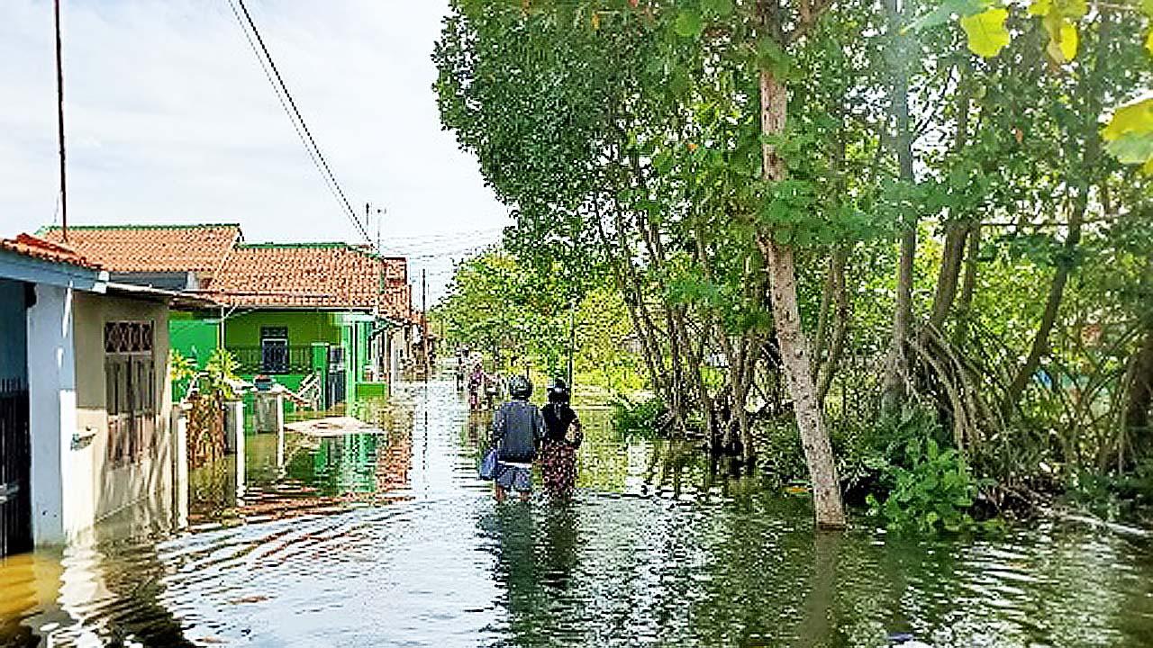 Dekan FP Unikal Ungkap Sebab-sebab Rob dan Banjir di Kota Pekalongan