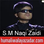 https://www.humaliwalyazadar.com/2018/09/syed-mohammad-naqi-zaidi-nohay-2019.html