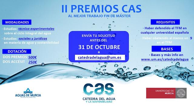II Premios CAS, al mejor TFM.