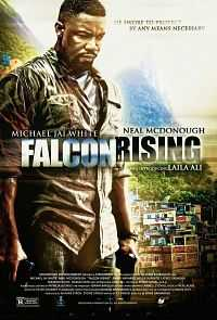Falcon Rising 2014 Hindi Download 300mb Dual Audio BRRip