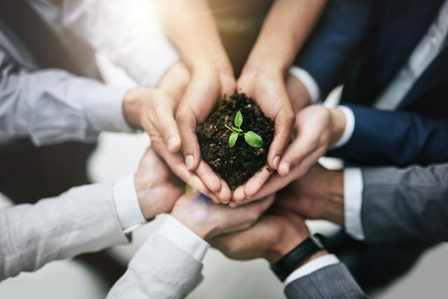 La importancia de la sustentabilidad