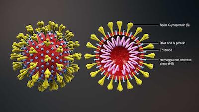 كل ما يجب أن تعرفه عن فيروس كورونا المتجدد