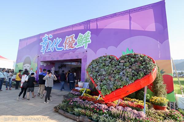 2019新社花海 台中國際花毯節 愛與希望-小王子的星球之旅 活動資訊