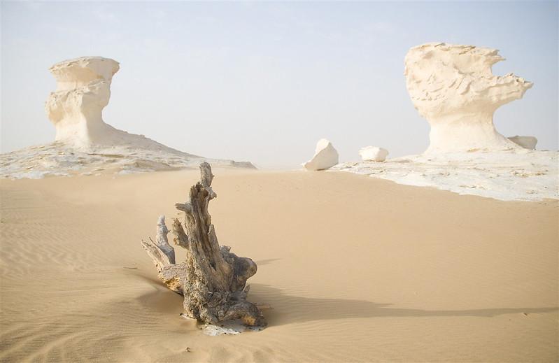 sahara egypt