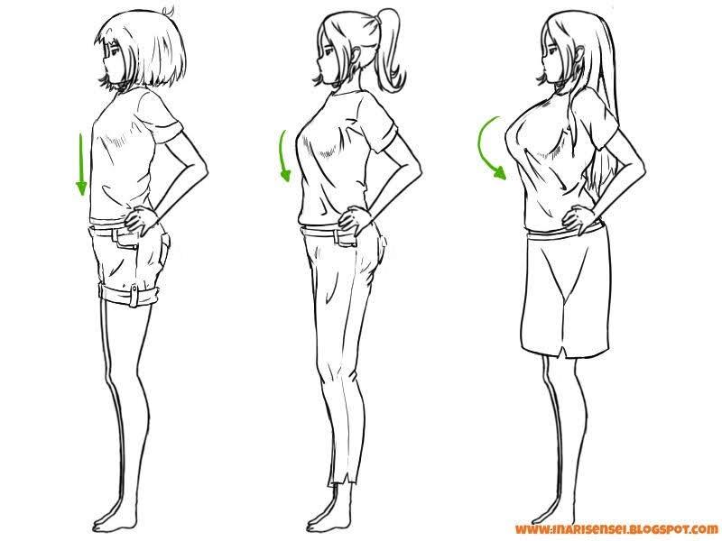 la poitrine et les plis