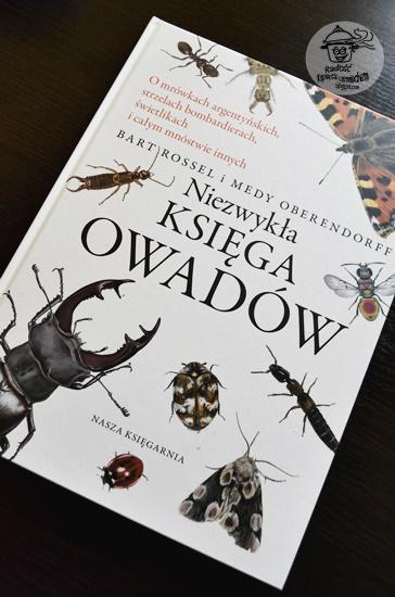 Niezwykła księga owadów , Bart Rossel - recenzja książki.